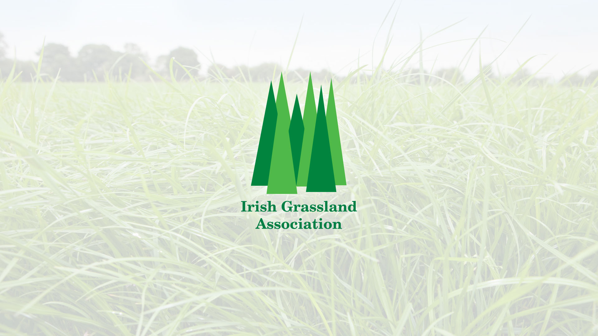 Portfolio: Irish Grassland Association