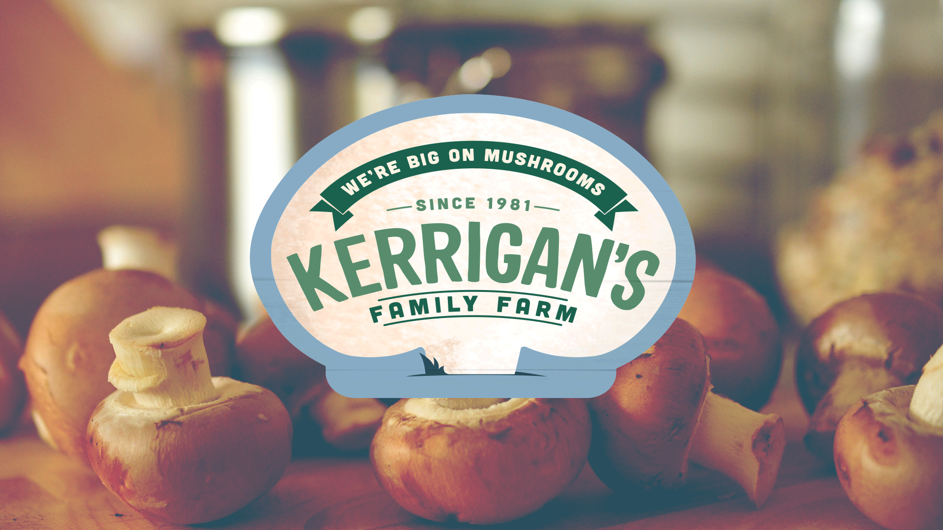 Portfolio: Kerrigans Mushrooms