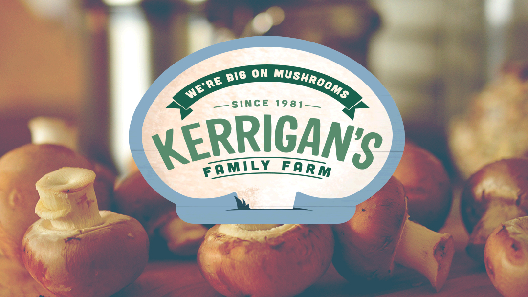 Other related project: Kerrigans Mushrooms